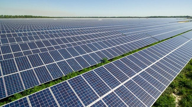An FPL solar field. (FPL)