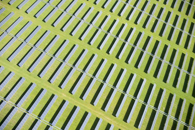 FPL's solar array in DeSoto County. (FPL)