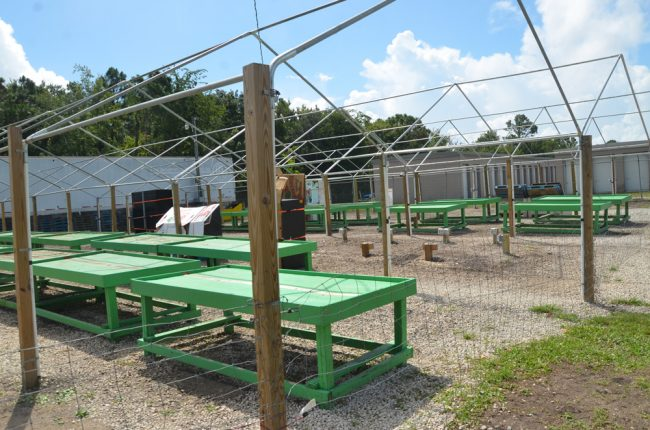 Samsue Produce's barren fruit stands in Flagler Beach, off of State Road 100, one of the rare times the stand was seen denuded for days on end. (© FlaglerLive)