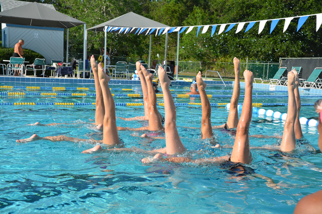 Flagler County's Synchro Belles train year-round at the Belle Terre Swim and Racquet Club. (© FlaglerLive)