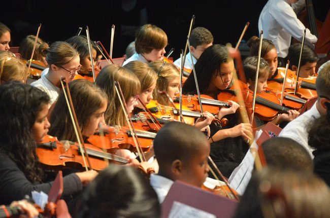 flagler youth orchestra