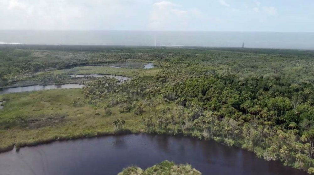 An aerial view of some of the land that would be developed by The Gardens, a still from a video the group Preserve Flagler Beach and Bulow Creek showed at a Flagler County Commission hearing on the development last week.