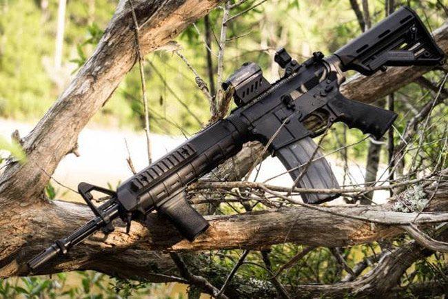 evers ar assault rifle