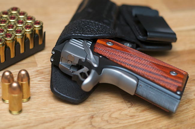 Gun bills may remain holstered in the coming session of the Florida Legislature. (LudaChris550)