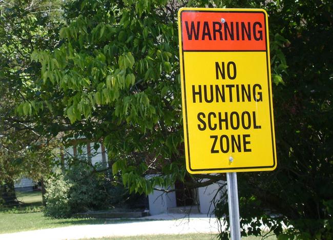 guns schools florida