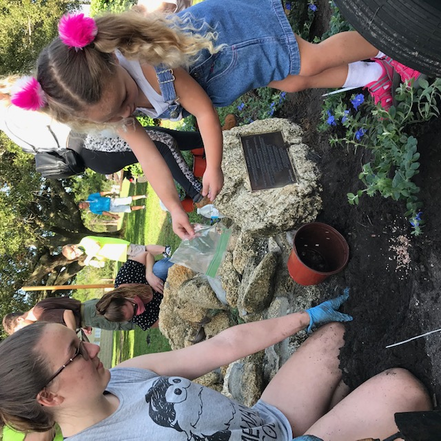 Volunteers of all ages plant around the coquina base for Garfield the Turtle, located at the entrance of the Palm Coast Historical Society in Holland Park. (Palm Coast)