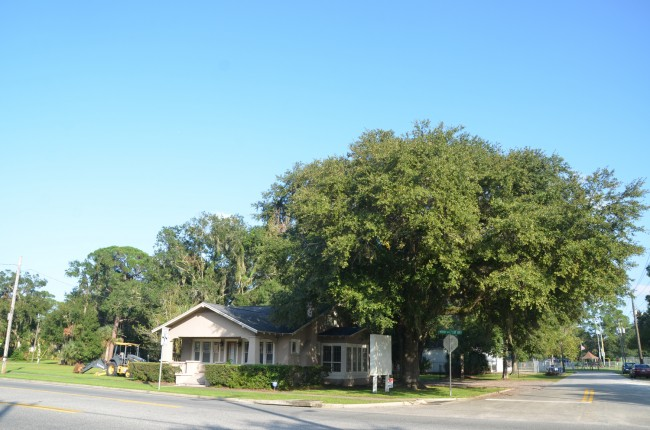 The tree at the corner is believed to be over 100 years old. Click on the image for larger view. (© FlaglerLive)