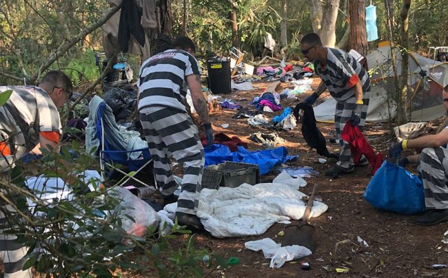 Flagler County jail inmates at work cleaning up the homeless camp near the public library in Palm Coast. (FCSO)