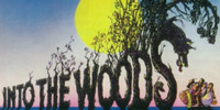 into-the-woods-playhouse