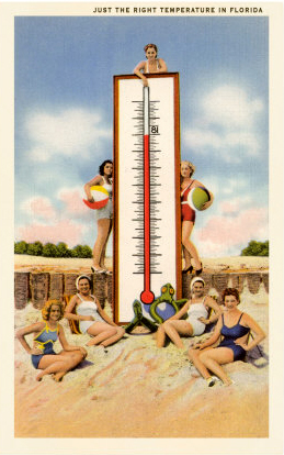 just the right temperature old florida postcard