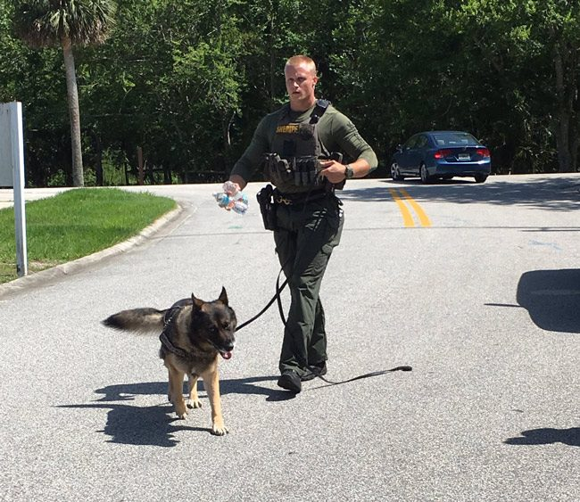 K-9 units are involved in the manhunt. (FCSO)