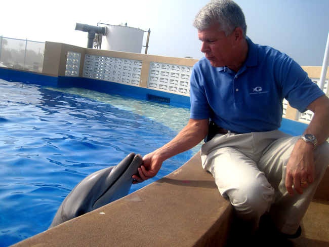 Georgia Aquarium President and COO David Kimmel got acquainted with one of his newest employees in Marineland last week. (© FlaglerLive)
