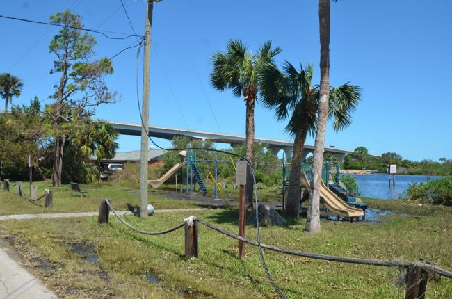 Downed lines Wednesday afternoon off Lambert Avenue in Flagler Beach. (c FlaglerLive)