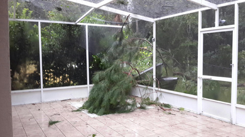No section of Palm Coast was spared: on Porcupine Drive, a large pine tree branch busted through the lanai.