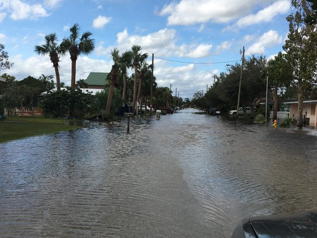 Lantana Avenue in Flagler Beach (Contributed/Andy Dance)