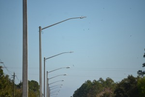 The two lights in the foreground, on Palm Coast Parkway, are the LED variety and produce a white light, the rest are high-pressure sodium vapor, producing an amber light. Click on the image for larger view. (© FlaglerLive)