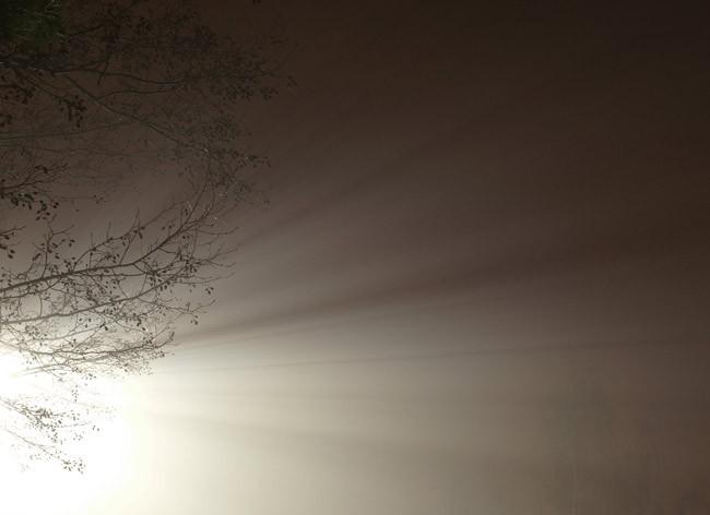 LED streetlight in fog. (Sándor Iskender)