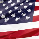 Pot-spangled banned. (Shutterstock)