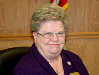 mary distefano palm coast city council