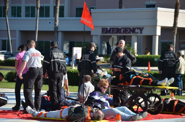 The mass-casualty simulation outside Florida Hospital Flagler Wednesday m orning involved 29 casualties and responders from every local fire department and emergency agency. Click on the image for larger view. (© FlaglerLive)