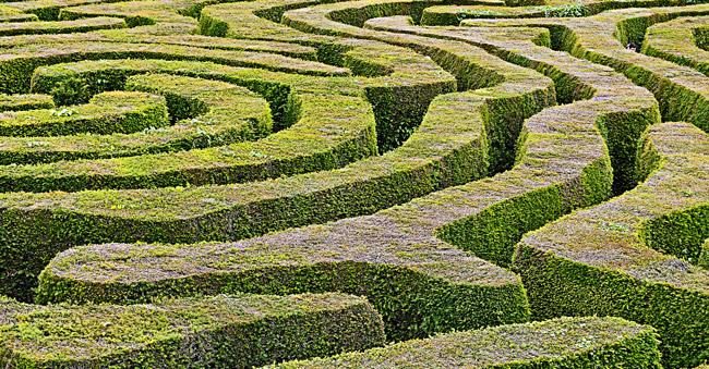 Florida's ethics maze (detail). (SanguineSea)