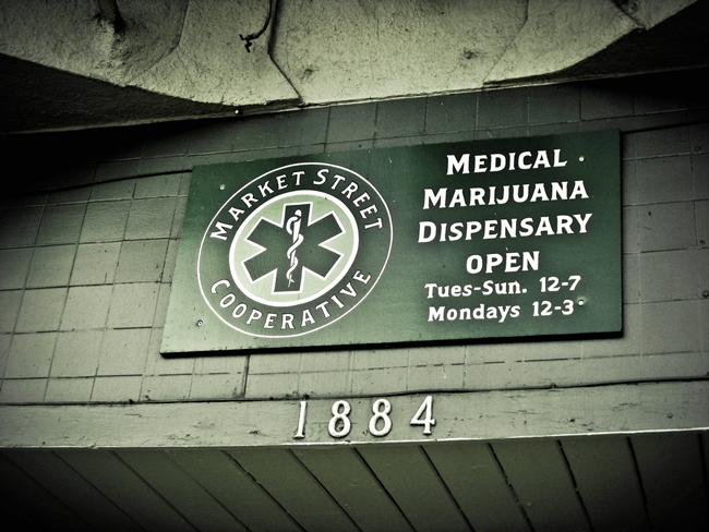 medical marijuana pot initiative florida constitution