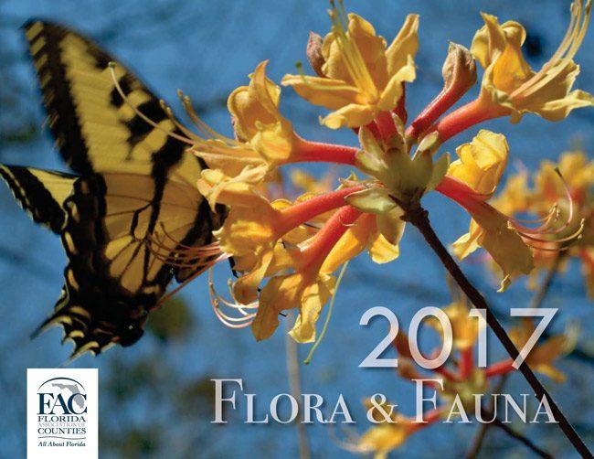 Florida Association of Counties 2017 calendar