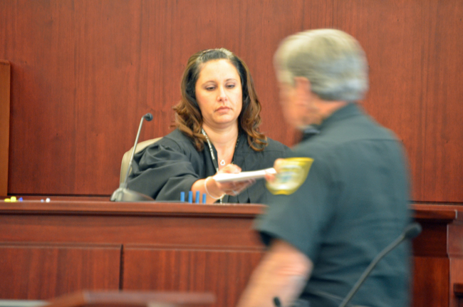 Flagler County Judge Melissa Moore-Stens on Wednesday was displeased by Palm Coast not showing up at its own red-light camera hearing, but said the matter will be resolved one way or the other. (© FlaglerLive)