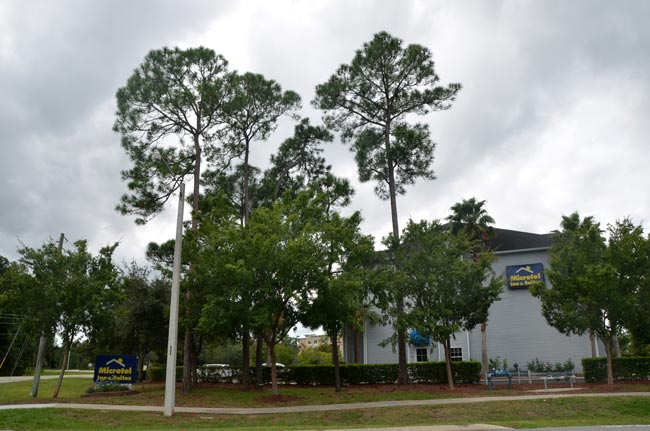 Palm Coast's Microtel will be in a foreclosure sale on July 21. (c FlaglerLive)