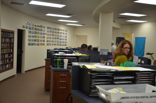 Grace Seay-peres of the Flagler County Tax Collector's office, where individuals getting or renewing their driver's license have been registering to vote for years. (c FlaglerLive)