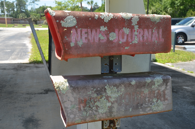 The newspaper boxes outside the old Memorial hospital in Bunnell. The county is not likely to include them in its renovations.  (© FlaglerLive)