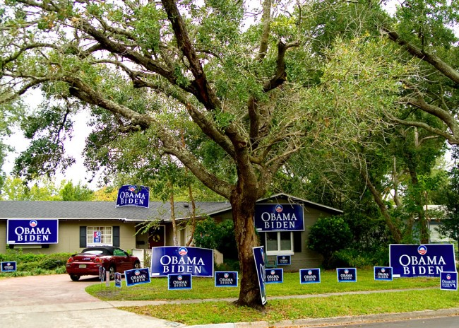 That aside, in Florida only Republicans grow on trees. (shutterblog)
