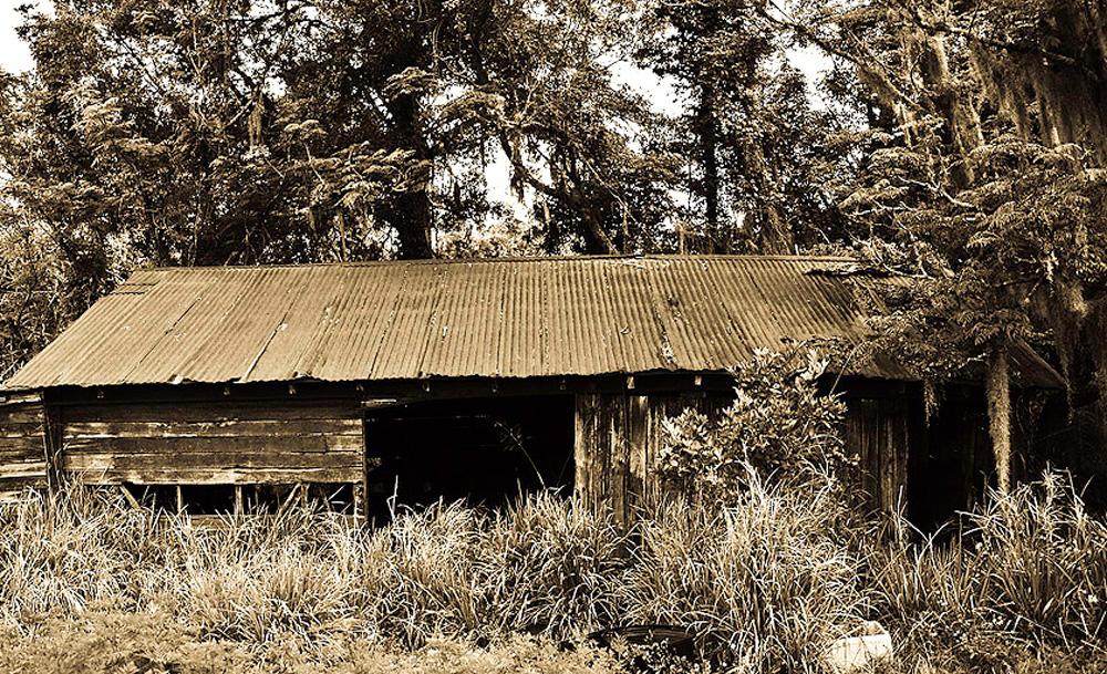 An abandoned shed in Ocoee. (Dan Tantrum)