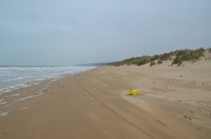 Omaha Beach today. Click on the image for larger view. (c FlaglerLive)