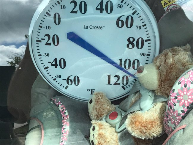 A temperature gauge inside a car today at the Target shopping center showed, during a demonstration by the Sheriff's Office and DCF, how quickly heat rises inside a vehicle. (© FlaglerLive)