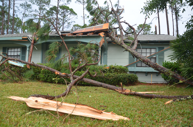 The Palm Coast City Council on Tuesday heard a post-mortem on the tornado that struck Palm Coast in December. (© FlaglerLive)