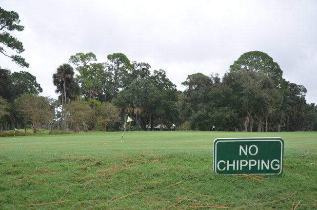 Palm Coast is putting on a new face on management of the city-owned Palm Harbor Golf Course--its own. (© FlaglerLive)