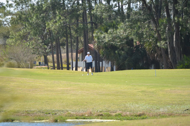 palm harbor golf course