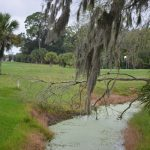 The Palm Harbor golf course neighborhood would see significant changes, as would the Palm Coast marina, if a pair of proposed developments make it through Palm Coast government's regulatory process in the next few weeks. (© FlaglerLive)