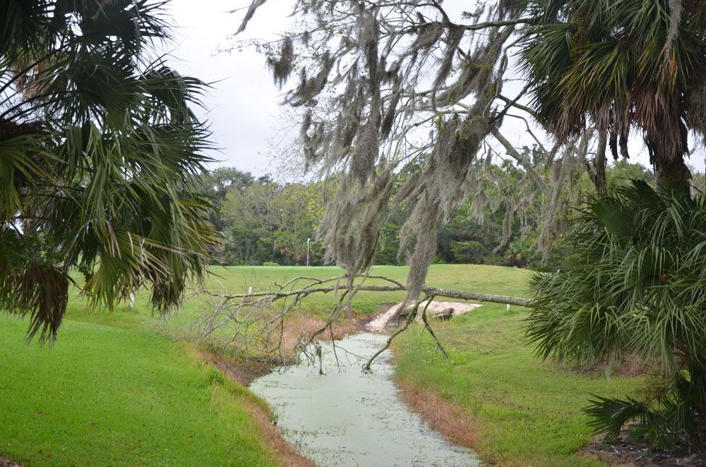 There will be no cell tower over the Palm Harbor golf course. (© FlaglerLive)