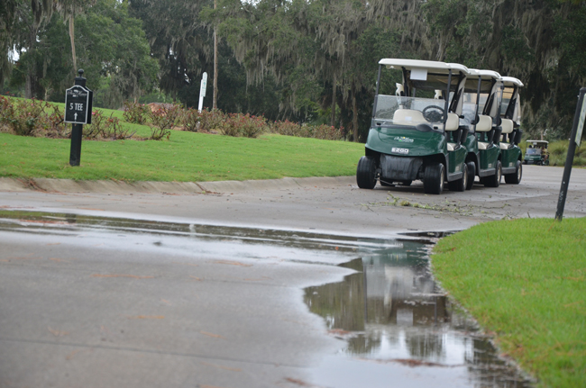 It's been that kind of gray, soggy time for the Palm Harbor Golf Club. (c FlaglerLive)