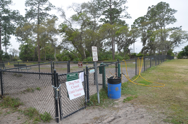 The dog park at Wadsworth Park in April 2013 was temporarily closed after a dog there either shed or contracted the parvo virus. The park will remain open after a stray carrying the virus was found somewhere in or near Wadsworth Park, but likely not the dog park, this week. (© FlaglerLive)