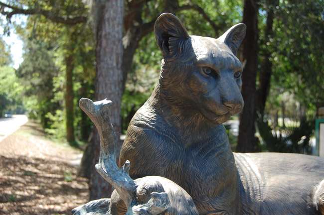 A detail of Paul Baliker's bronze sculpture of a panther, installed at the entrance of Linear Park in Palm Coast in 2010 through the auspices of the Gargiulo Art Foundation. Tom Gargiulo now wants to put up a whole garden of sculptures in Town Center. (© FlaglerLive)