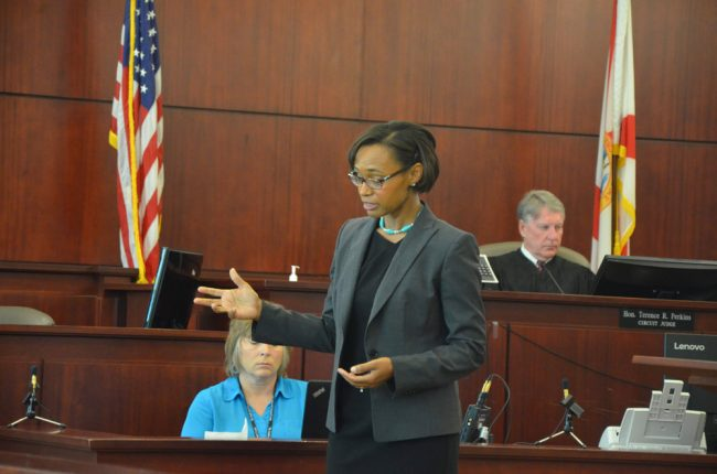 Assistant Public Defender Rose Marie Peoples in her opening arguments this morning. Click on the image for larger view. (© FlaglerLive)