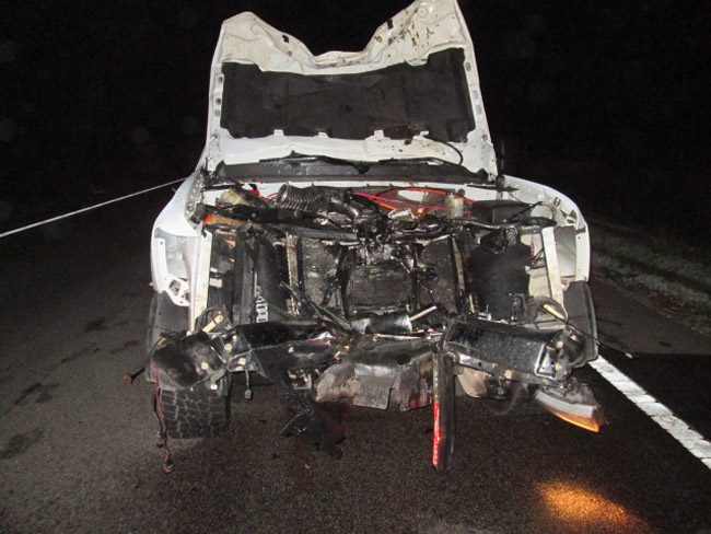 A pick-up truck on State Road 100 was first to crash into a cow at 11:30 p.m. Tuesday evening, totaling the vehicle. (FCSO)