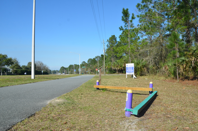The intersection of Pine Lakes Parkway at Wynnfield Drive falls along a popular biking, walking and exercise path, and a wall of woods, some of which would be cut down to make room for a gas station and convenience store. (c FlaglerLive)