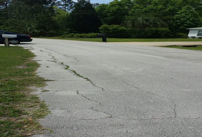 On Pineapple Drive, road and grass have grown especially fond of each other. (Palm Coast)