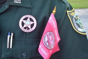 sheriff pink badges
