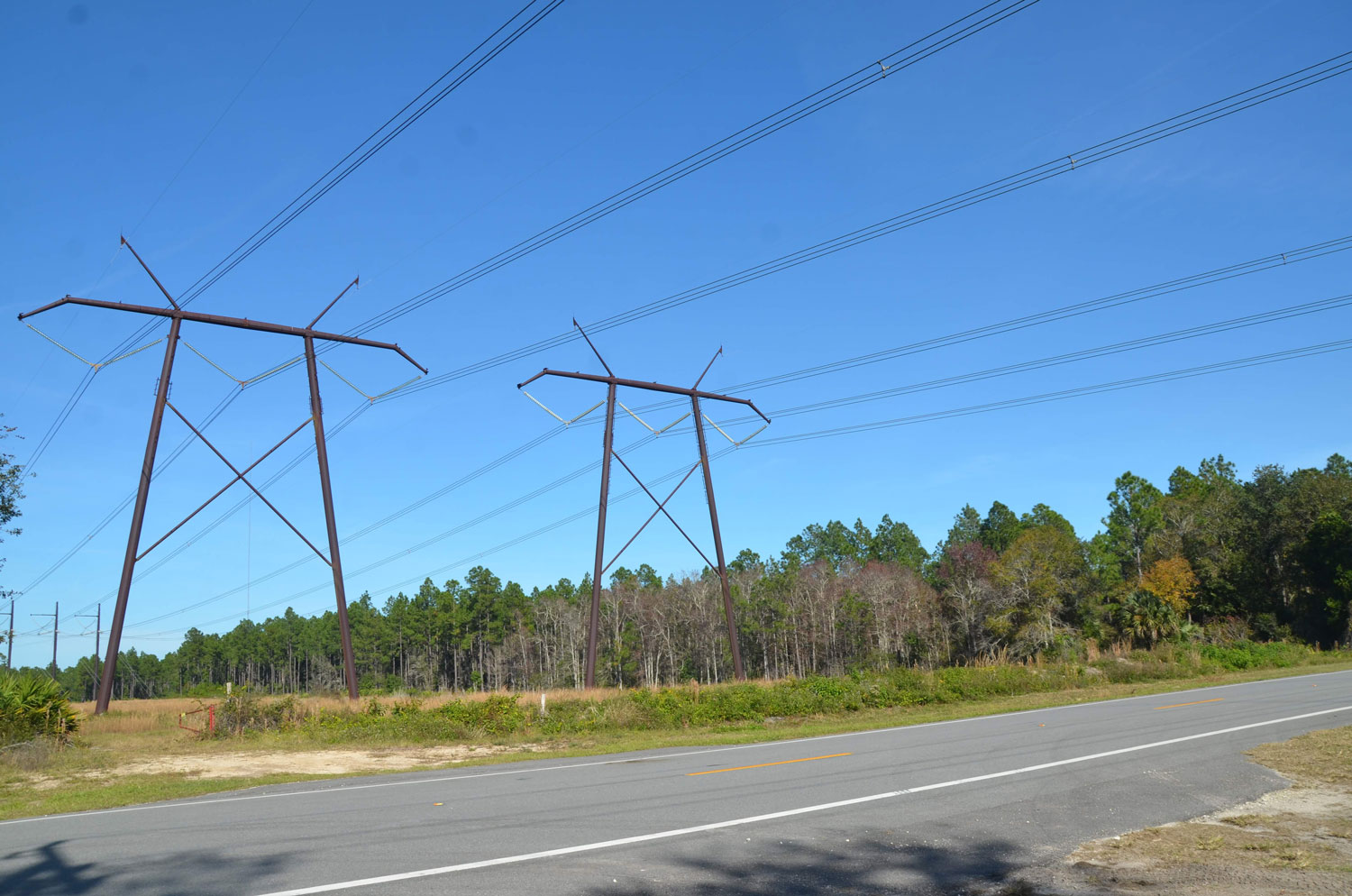 Khawja flew below these power lines. (© FlaglerLive)