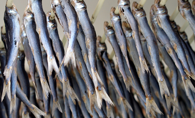 The Florida prison system has replaced its usual kosher-meal option with foods inmates consider gross, including sardines. (Christoph Rupprecht)